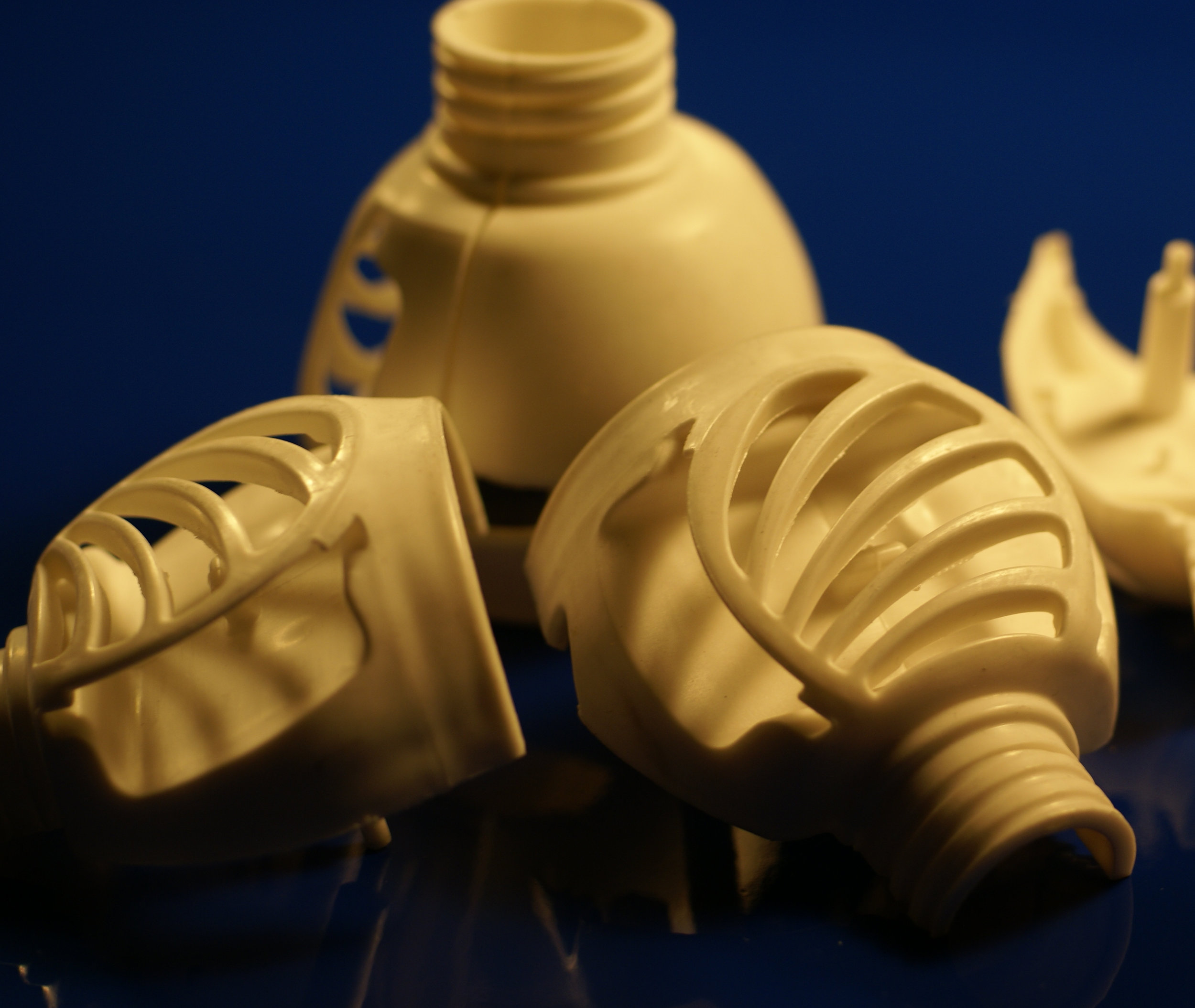 SC Johnson Bottle.jpg