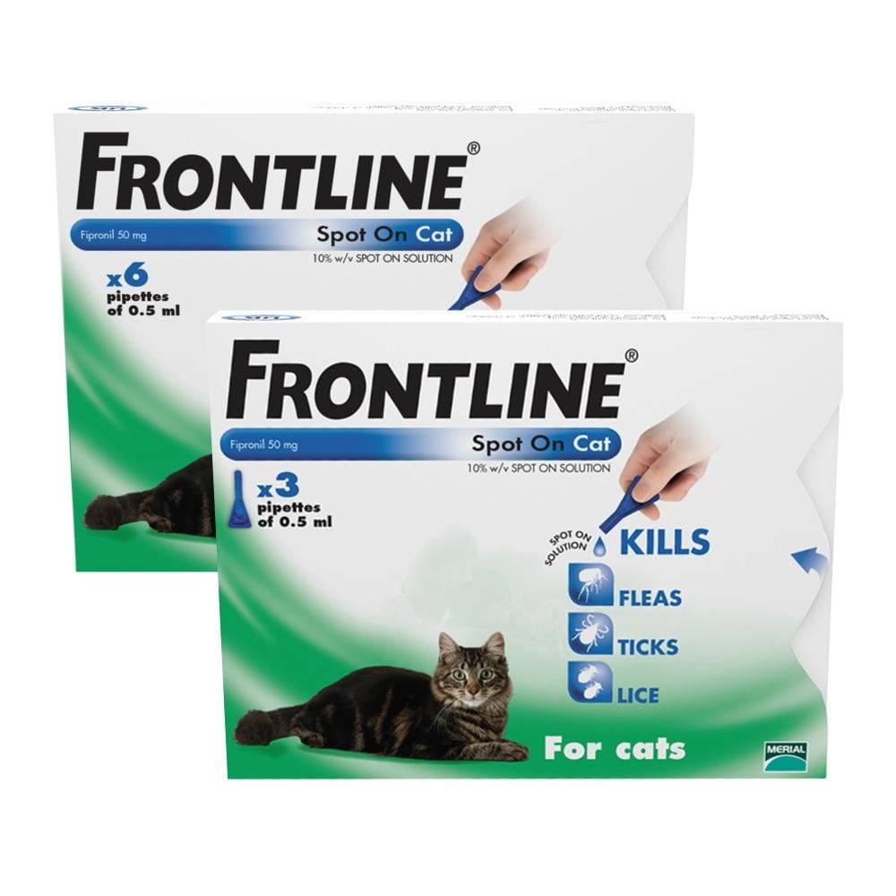 frontline cat.jpg
