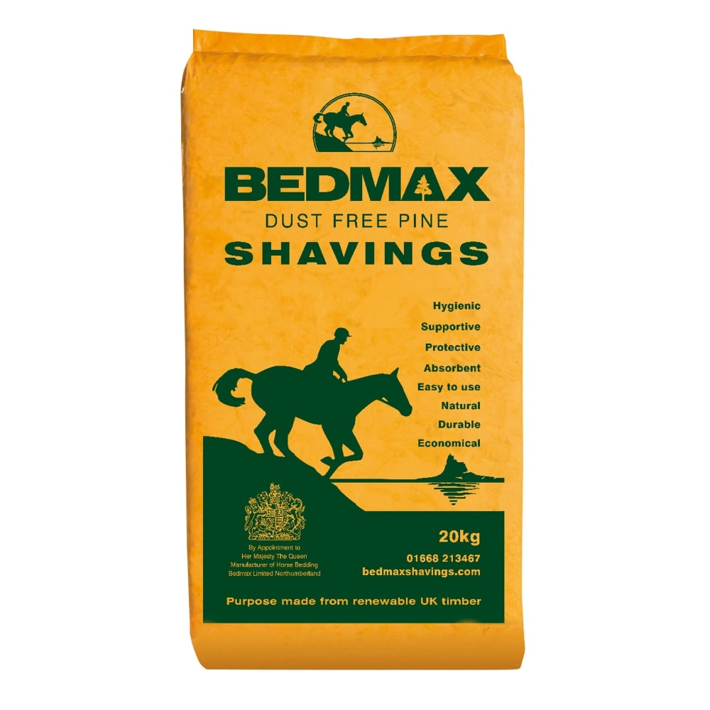 bedmax horse.jpg