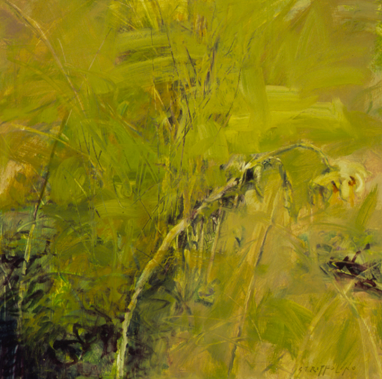 Sunflower and Grasses - 18x18