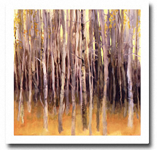 TREE FORMS STUDY Image: 36 x 36, Paper: 39 x 39
