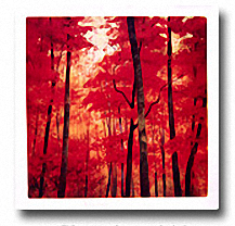 VERMILION WOOD Image: 24 x 24, Paper: 27.5 x 27.5