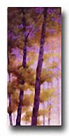 PURPLE WOOD I Image: 24 x 12 Paper: 24 x 12