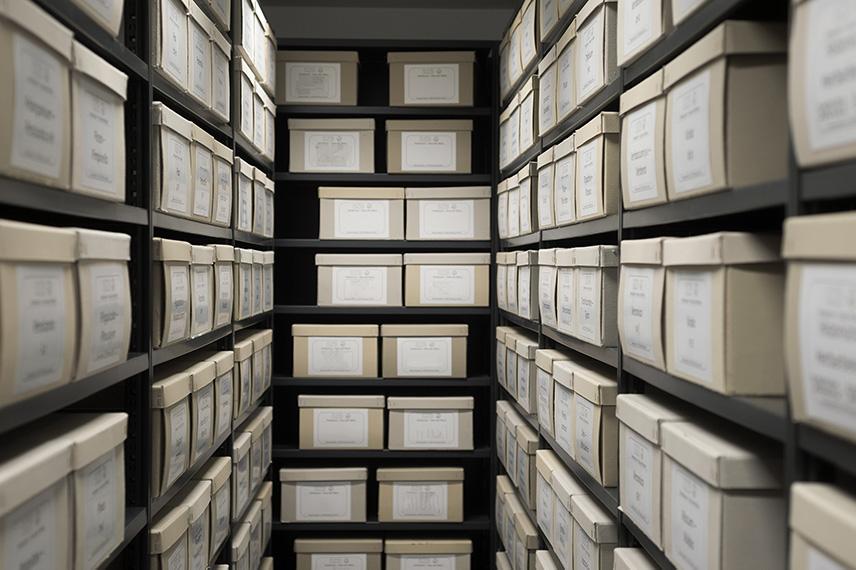 moringa-studies-archive.jpg