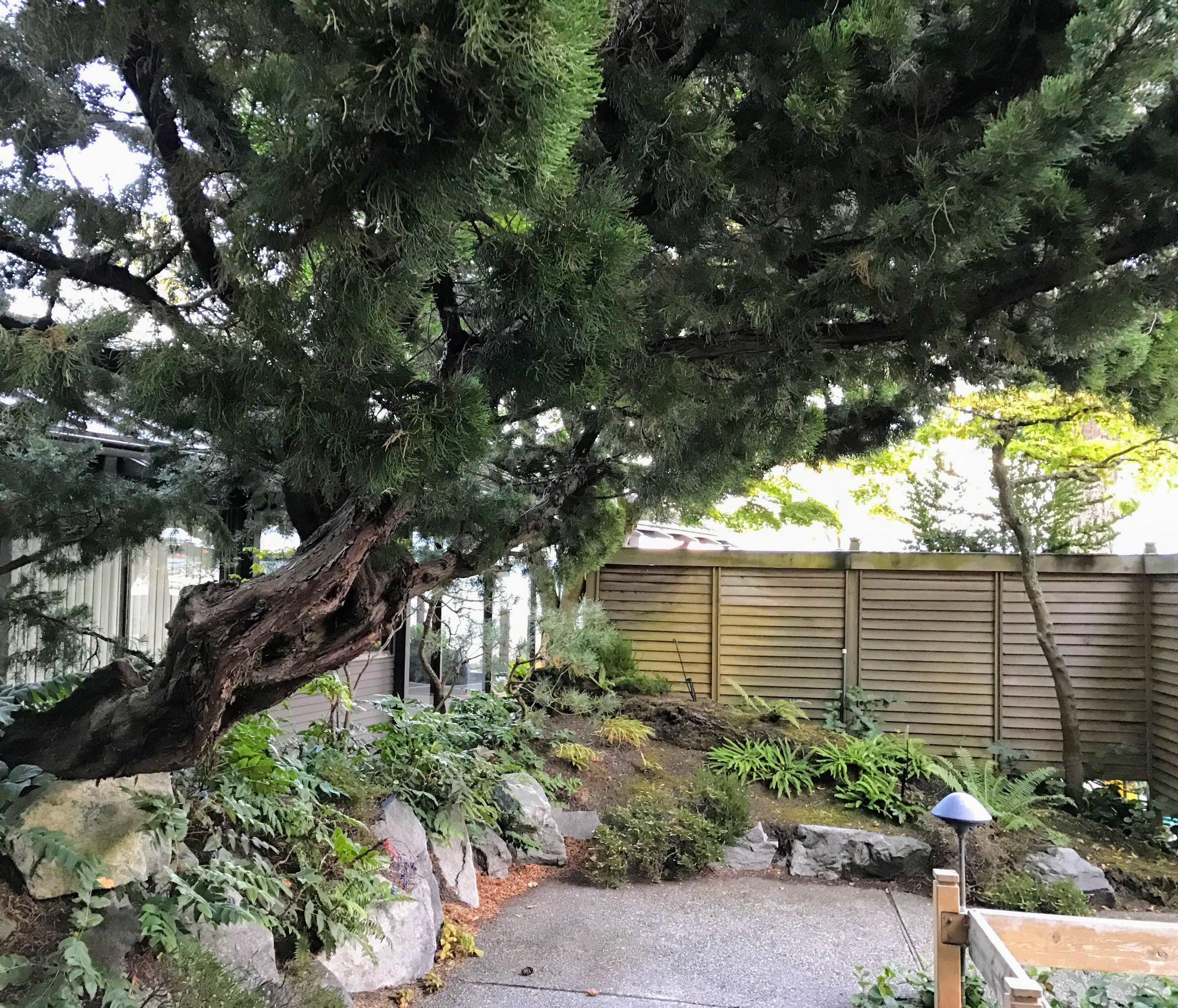 Garden PreWork.JPG