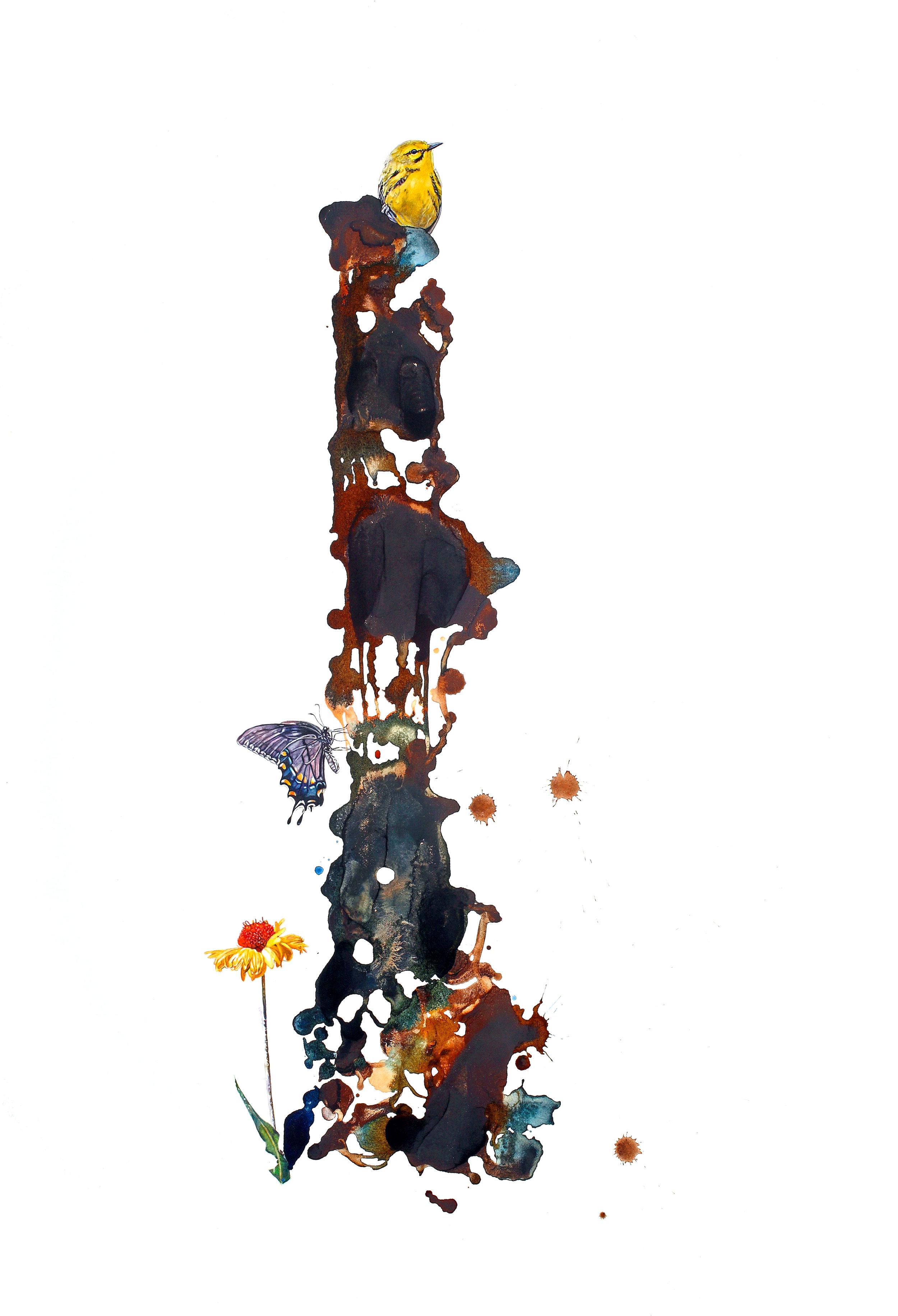 """""""Prairie Warbler,"""" 36 x 25,"""" watercolor on paper, SOLD"""