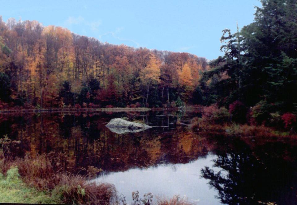 Colebrook Lake_b.jpg