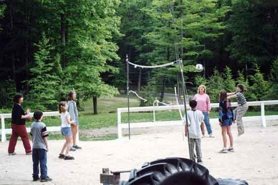 volleyball-o.jpg