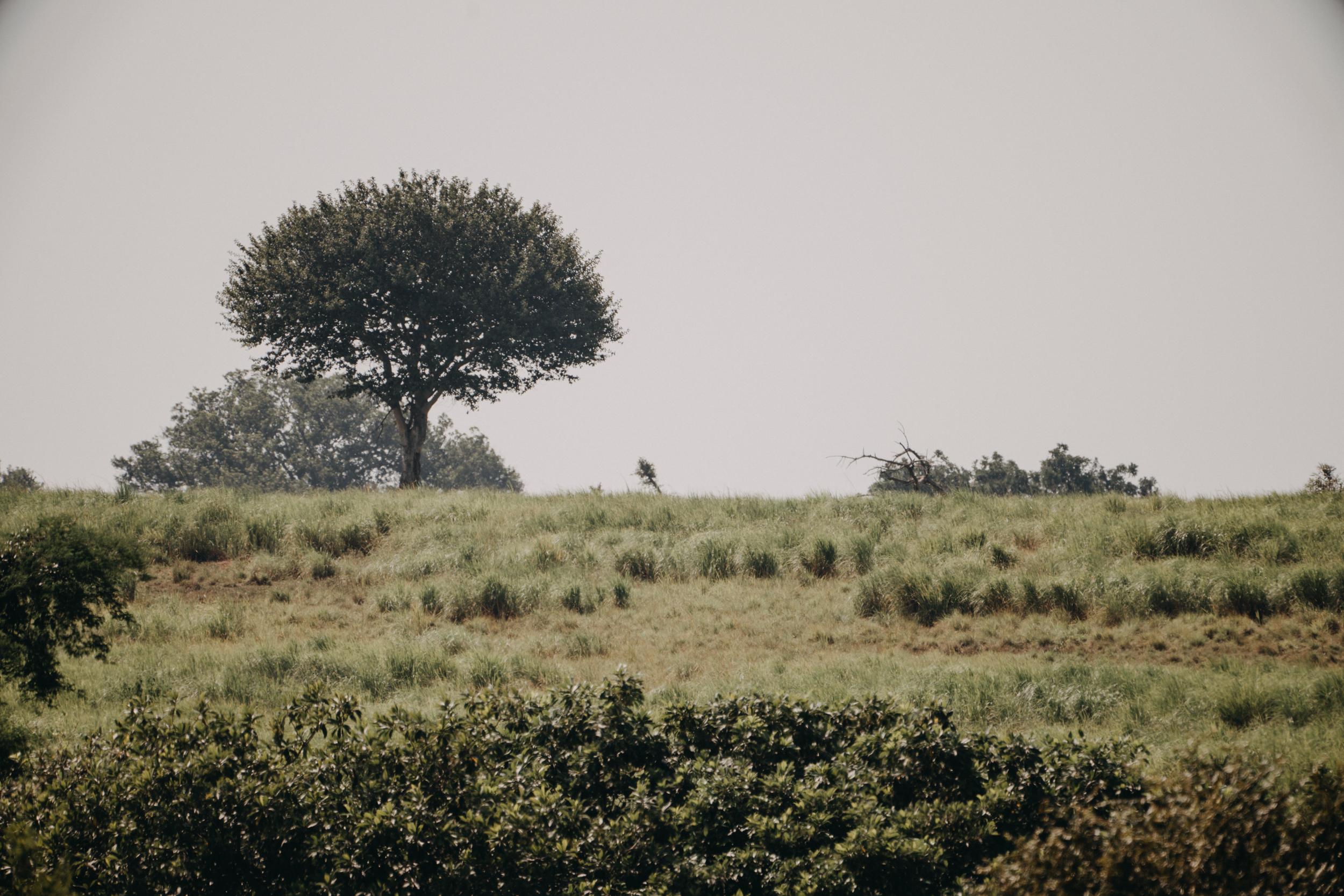 uganda july 2018-224.jpg