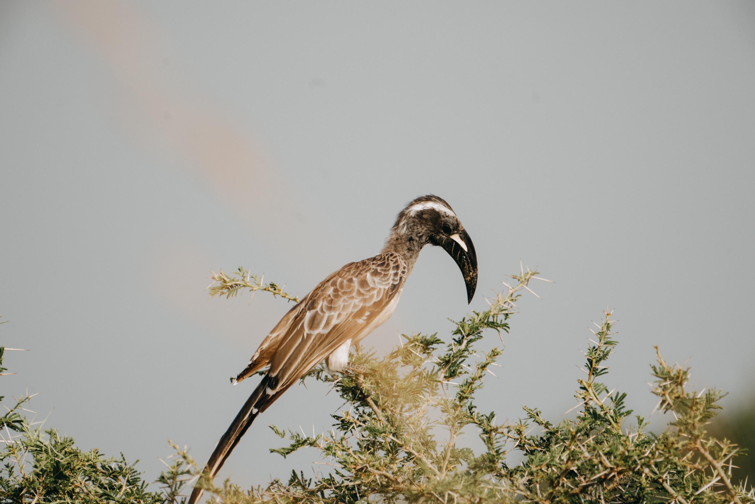 uganda july 2018-249.jpg