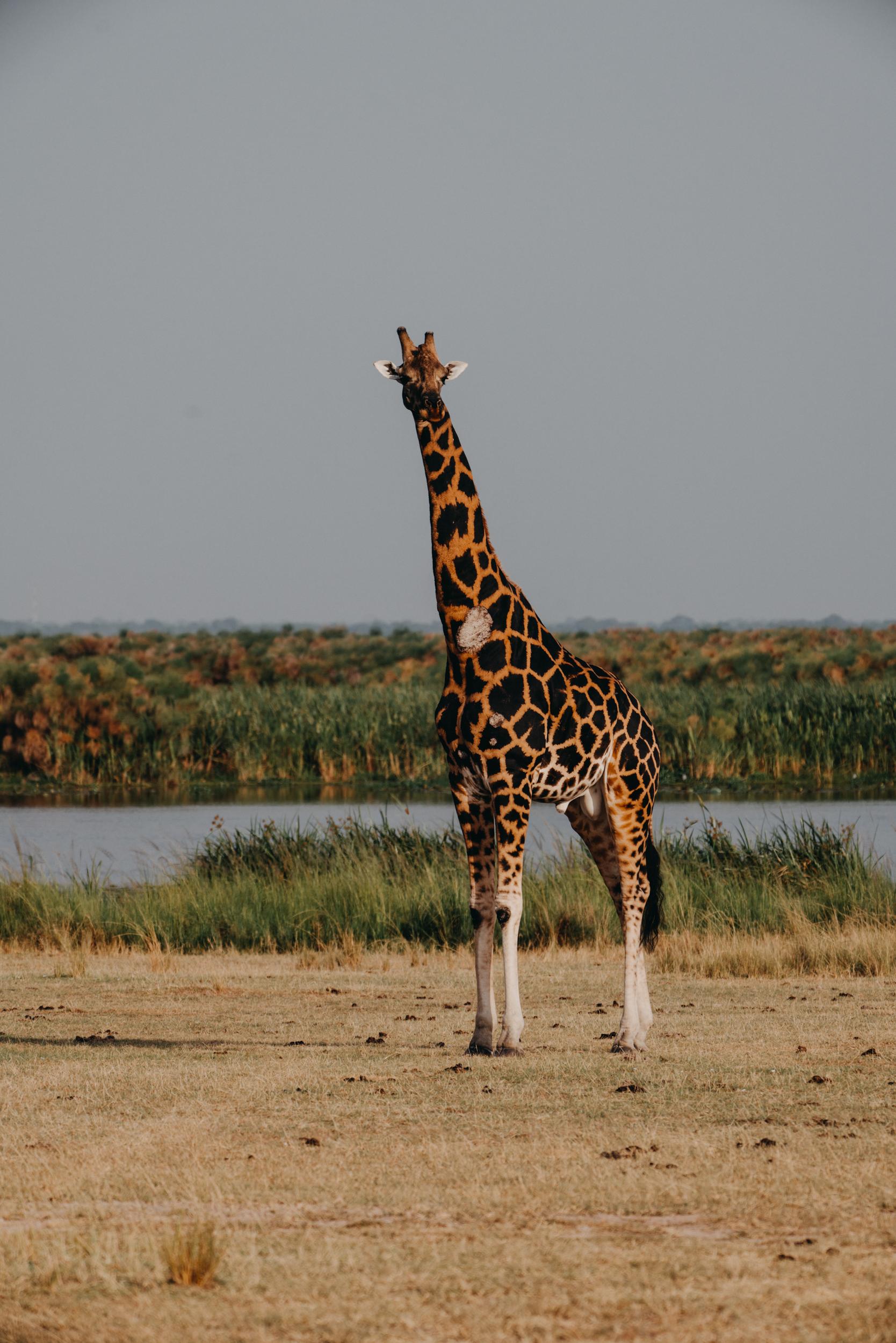uganda july 2018-276.jpg