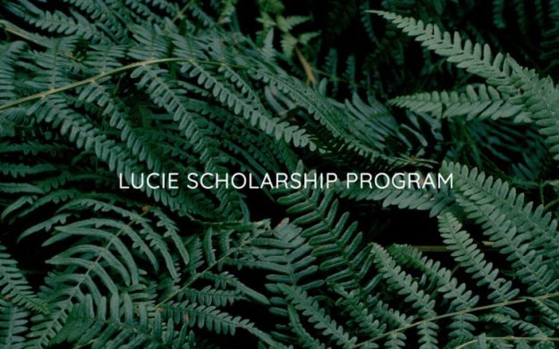 Lucie Foundation Program