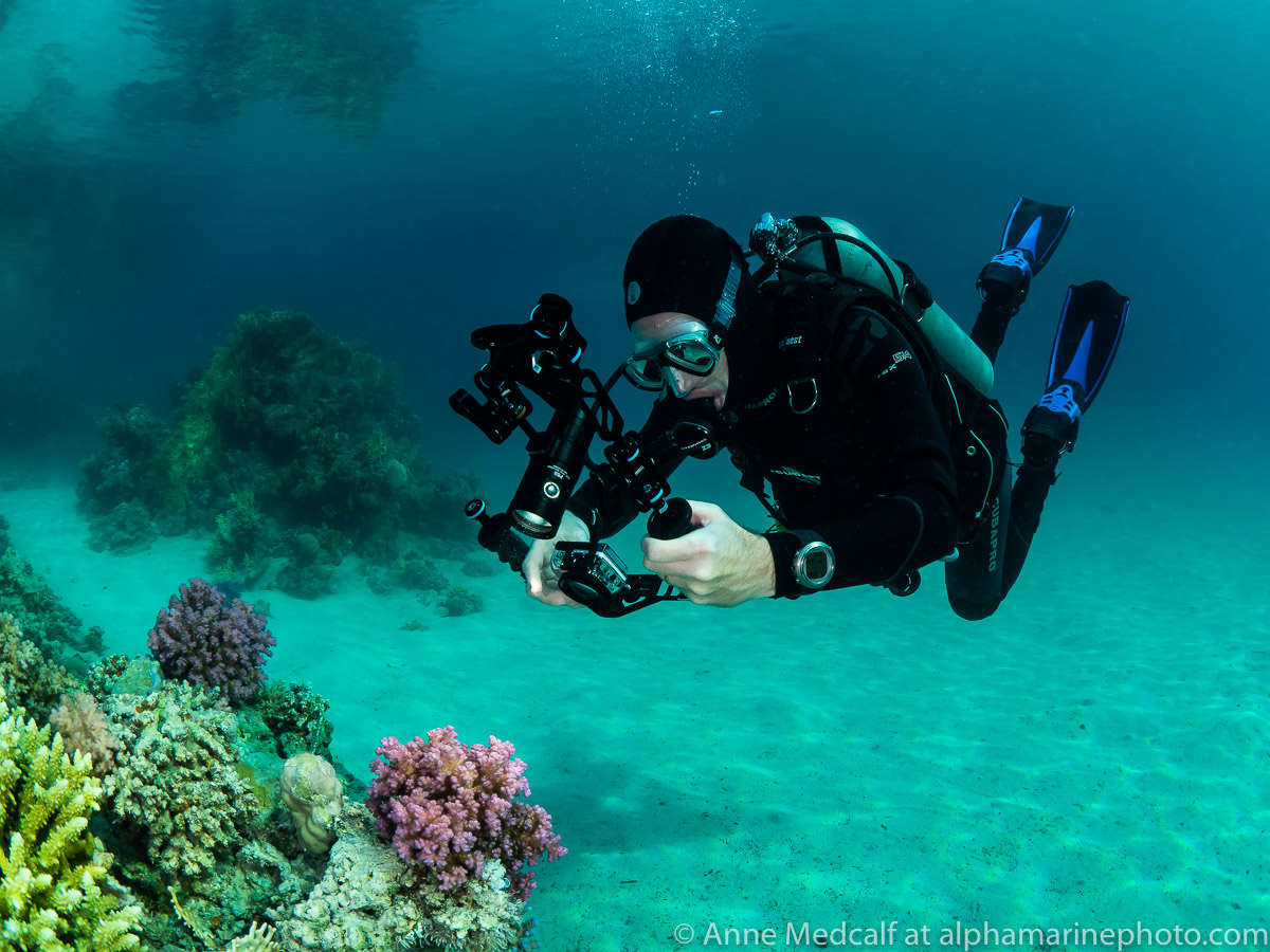 Here's me using the setup discussed in this blog while diving in the Egyptian Red Sea at Marsa Shagra Village. Having two lengths of arm and three clamps gives more flexibility when positioning whatever light source you are using.