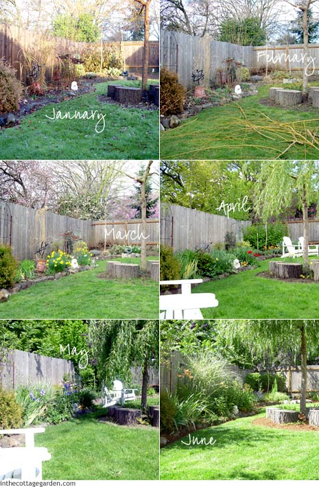 Collage of Garden Time Series