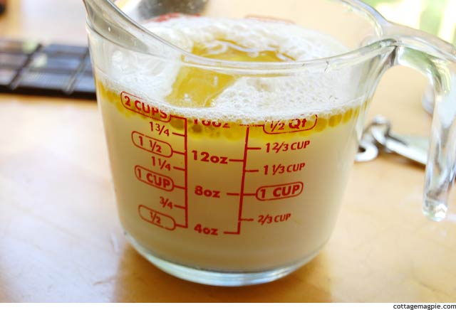 Oil Added to Milk, Water and ACV in Liquid Measure
