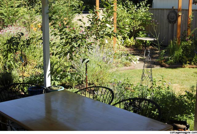 Garden View from Patio Table