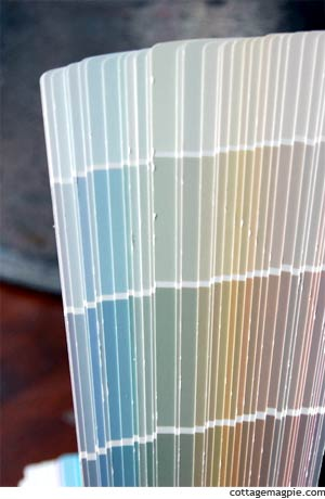 Silver Sage and Sea Salt Paint Chips