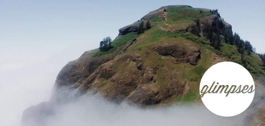 fog.glimpses.jpg