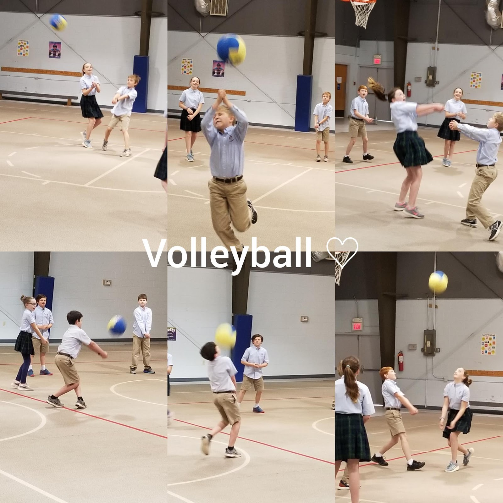 volley1.jpg