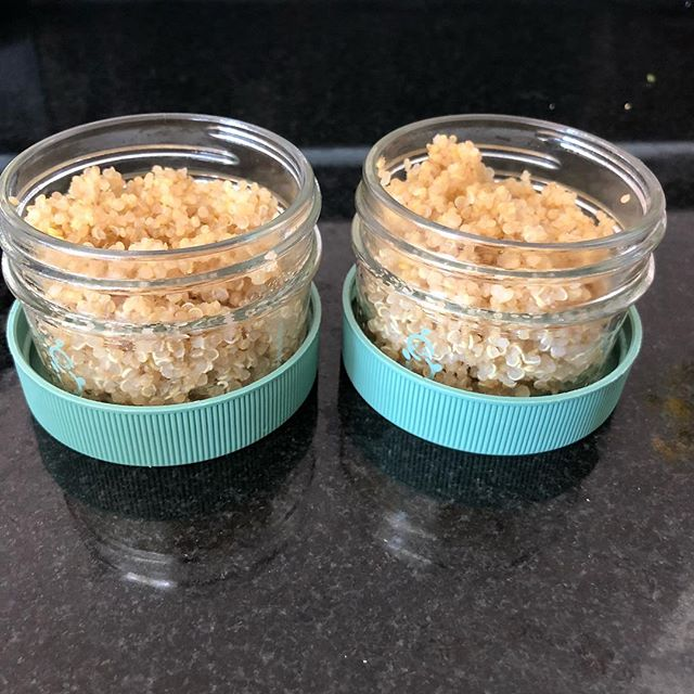 Pretty hard to impossible to always have food ready for your kids who eat dinner at 5 or 6 pm. Every time I make a batch of grains like quinoa I freeze 1-2 portions so always have freezer stocked with ready made foods for quick weeknight dinners. My fav glass storage containers @sagespoonfuls #tinytasters #toddlereats #babyfood #kidfood #foodprep