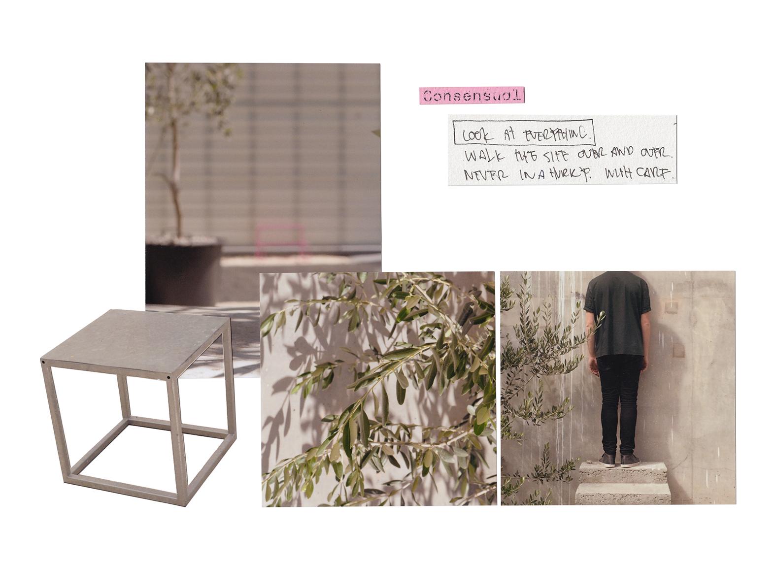TG3-collage-09.jpg