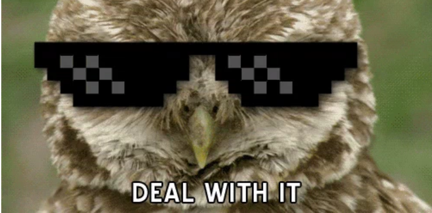 deal_with_it.png