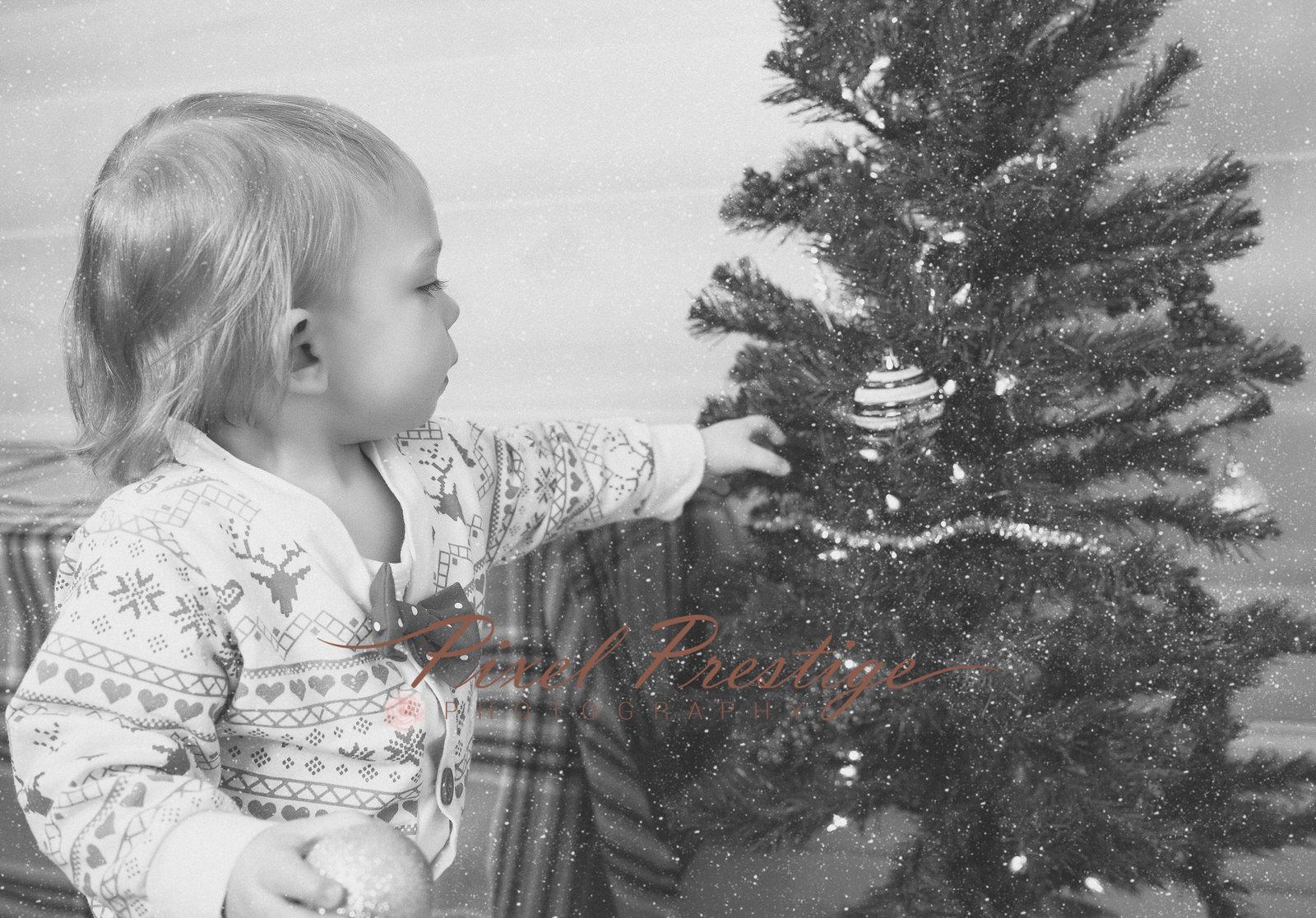 family christmas (10).jpg