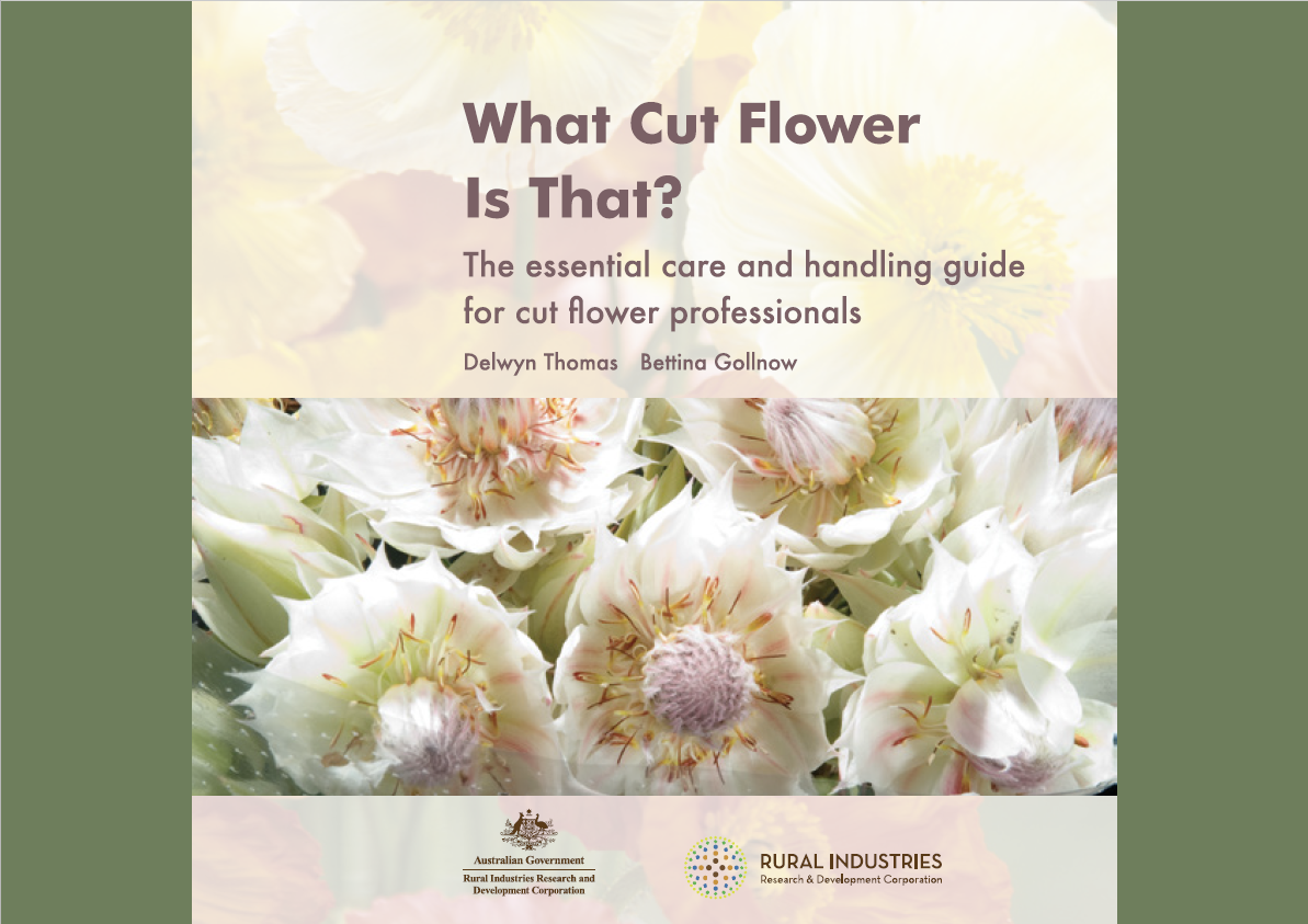 What Cut Flower is that -- Agrifutures ebook cover page.png