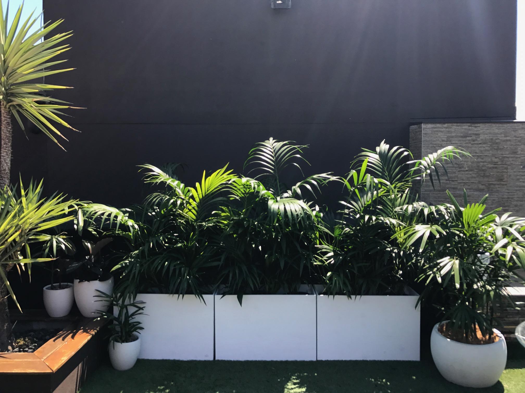 Custom Planter Boxes