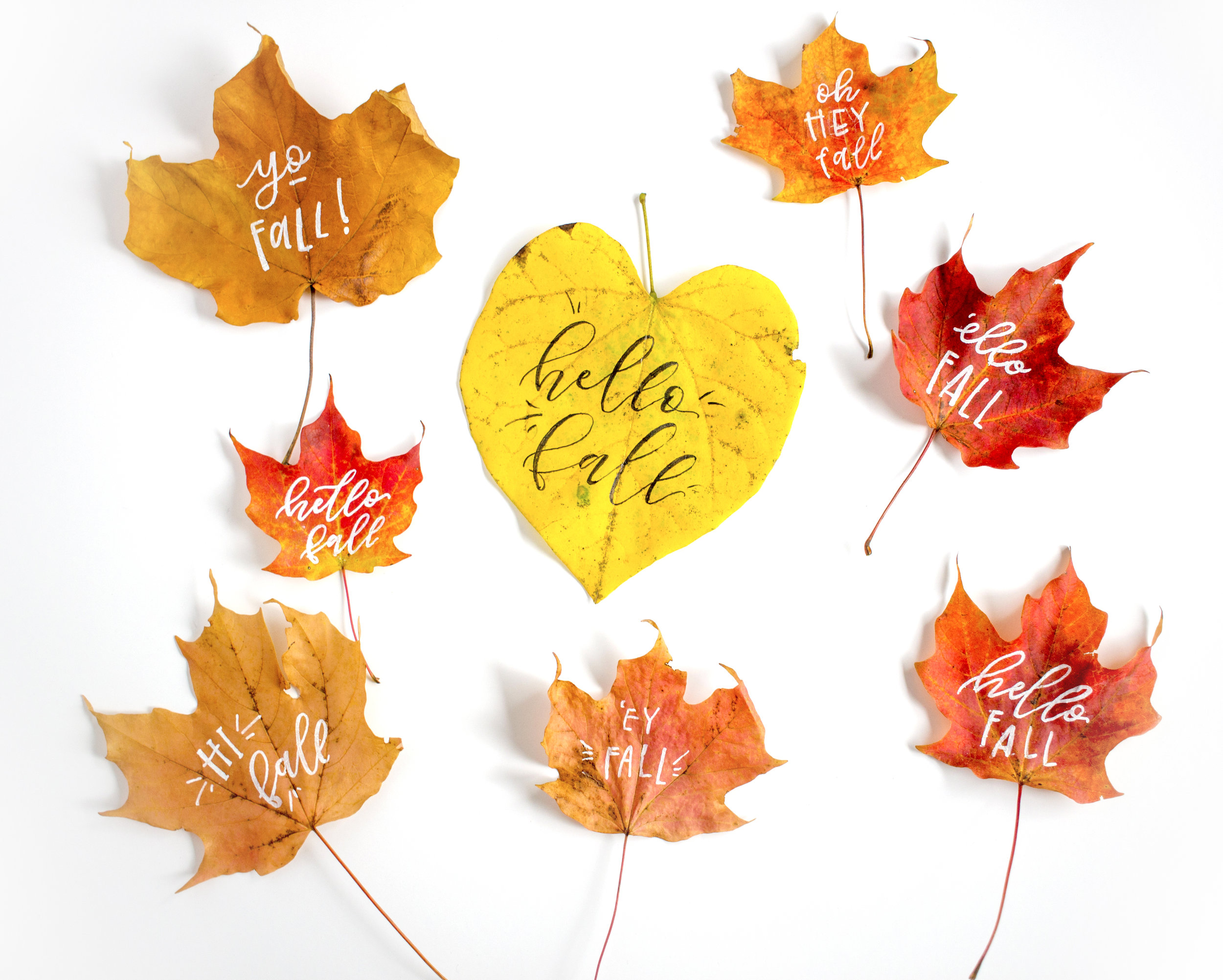 Lettering on leaves