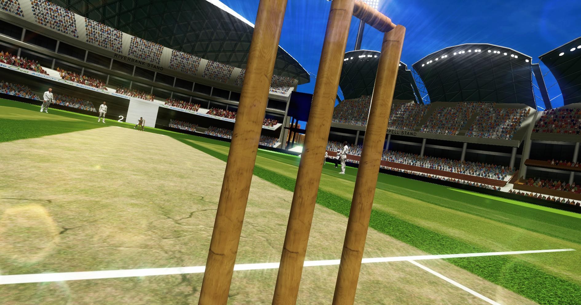 Cricket8.jpg