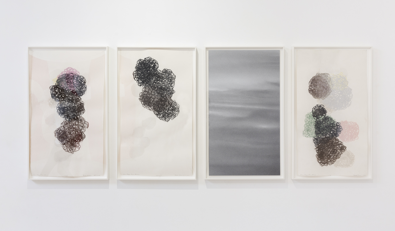 DENISE GREEN  Saar Elegy: From Above  2014 three works on paper and one photograph overall dimensions: 75 ×188 cm