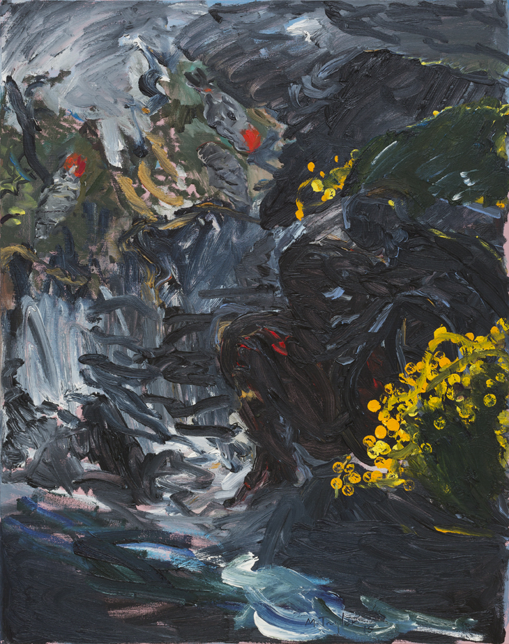 MICHAEL TAYLOR  Gang–Gang Creek  2015 oil on canvas 122 × 96 cm