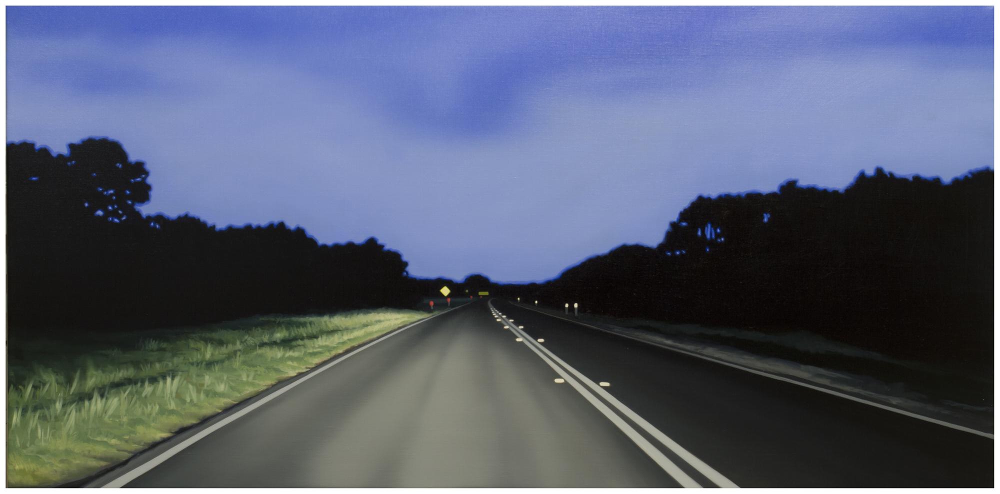 TONY LLOYD  Parallel lines  2014 oil on linen 61 ×122 cm