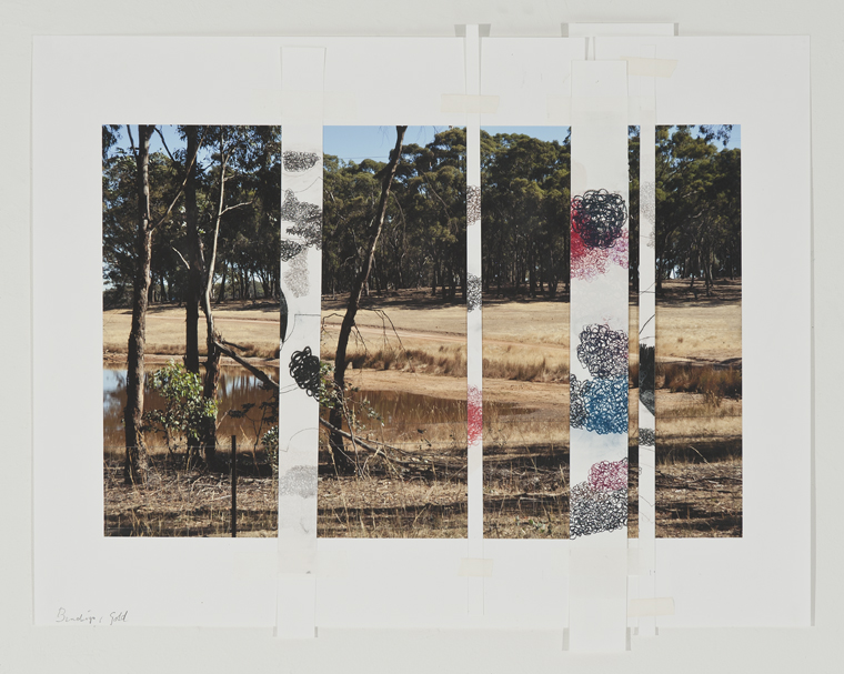 DENISE GREEN  Bendigo Gold  2015 one photograph and four drawings 45.7 × 56.7 cm