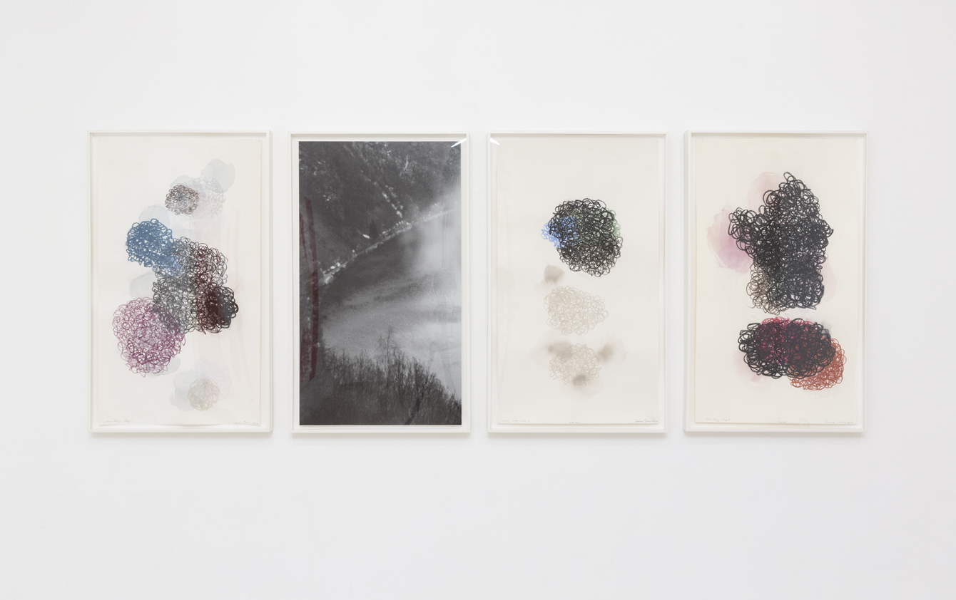 DENISE GREEN  Saar Elegy: Loop  2014 three works on paper and one photograph  overall dimensions: 75 × 188 cm
