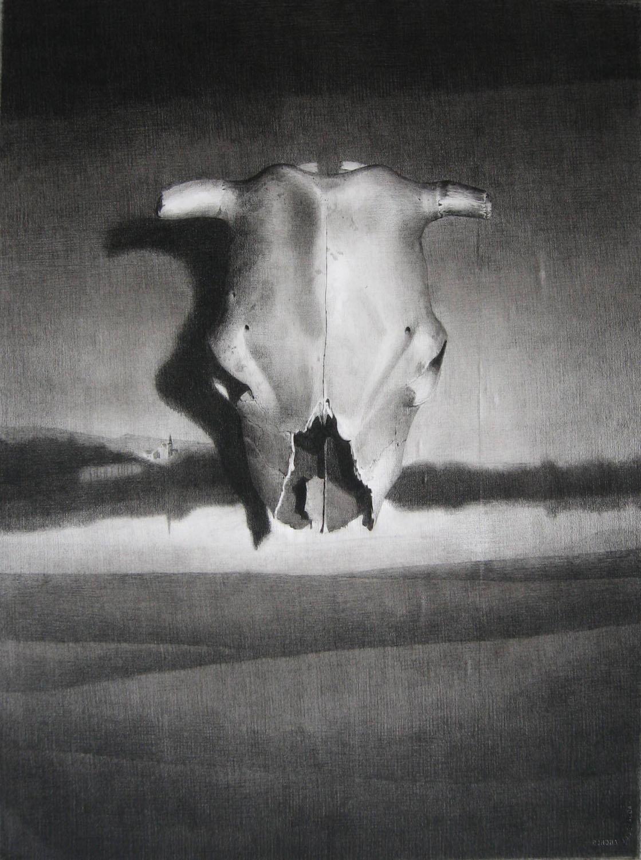 SIMON KENNEDY  Millthorpe 2006 charcoal on paper 76 × 56 cm