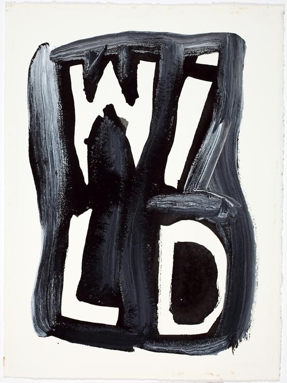 JELLE VAN DEN BERG  Wild  2009 47 ×38 cm