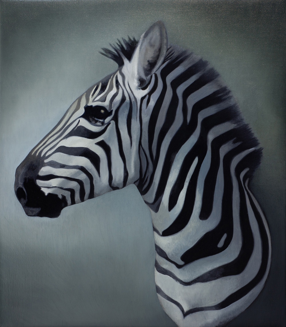 SIMON KENNEDY  Zebra  2011 oil on linen 45 × 35 cm