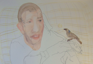 TONEE MESSIAH  Bowerbird See's Your Blue Eyes  2007 watercolour, coloured pencil and pen on paper 72 × 51 cm
