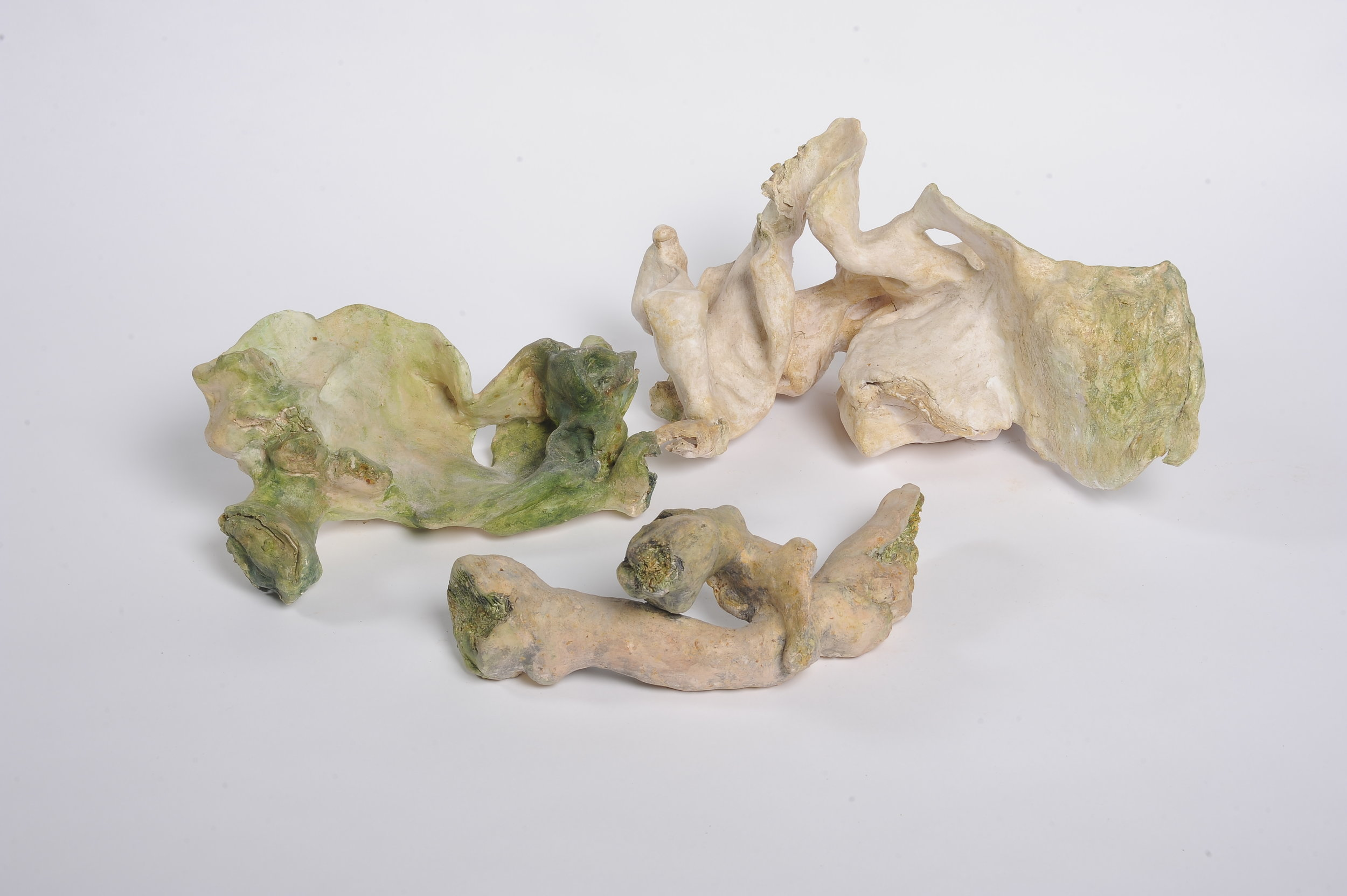 NAOMI ELLER  Embodiment of Memory  2014 Ceramic, oil paint, shellac and wax Dimensions variable
