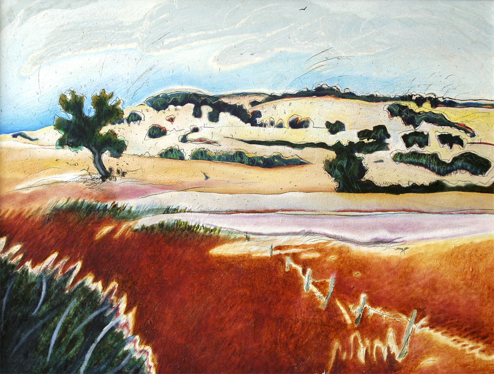 Wannamal Hills  490mm H x 600mm W  Oil and Mixed Media on Canvas