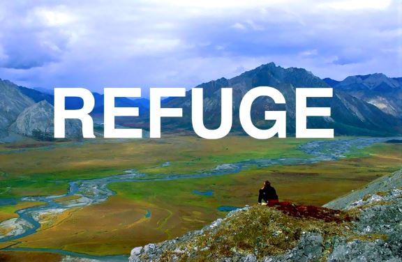 REFUGE - January 12 - February 4, 2019 | Reception, January 12, 6:30PMThe Beatnik Lounge61568 Twentynine Palms Highway, Joshua Tree, CA 92252