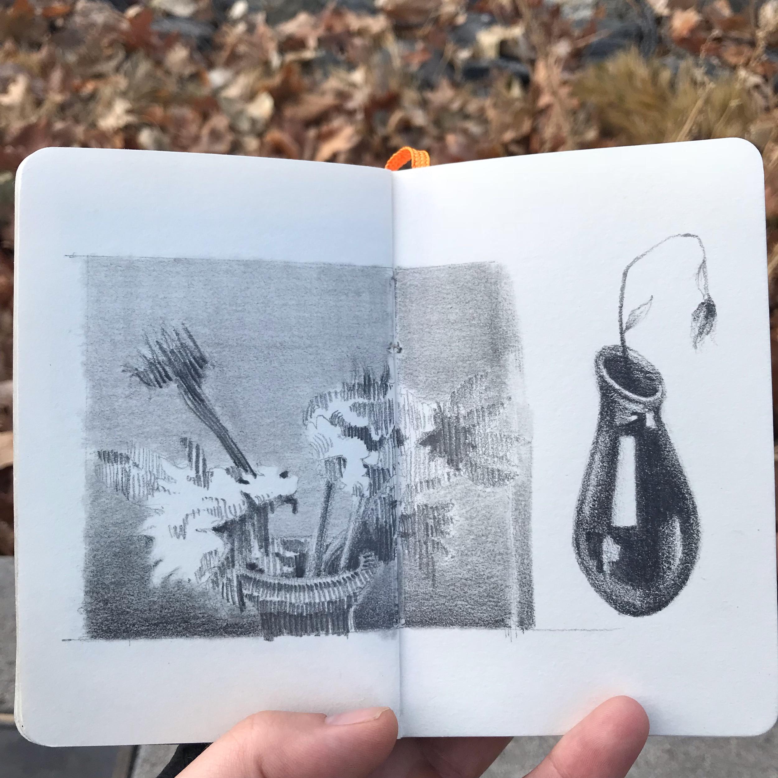 flowers & vase - pencil in sketchbook