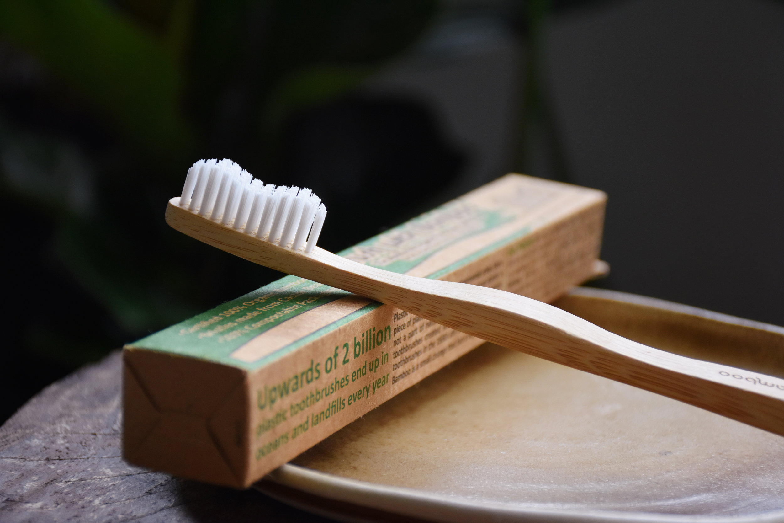 Plant-based toothbrushes
