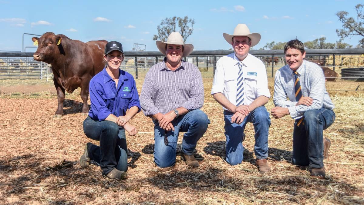 The $14,000 top price bull with vendor Jen Jeffreys, buy Spencer Morgan, The Grove, Meandarra, Queensland, Auctioneer Paul Dooley, and Bob Jamieson Agencies agent Keiran Te Velde.