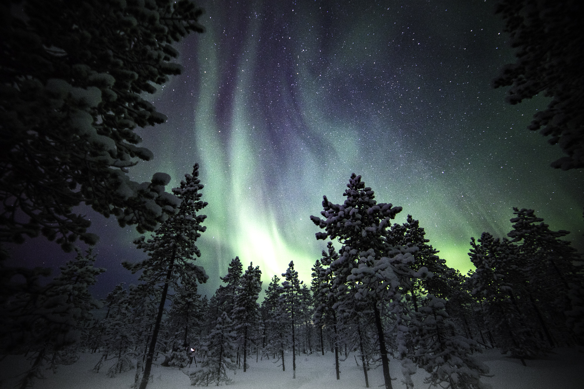 auroraborealis-12.jpg