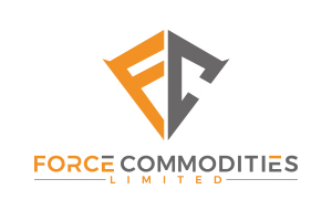 pryzm force commodities.jpg