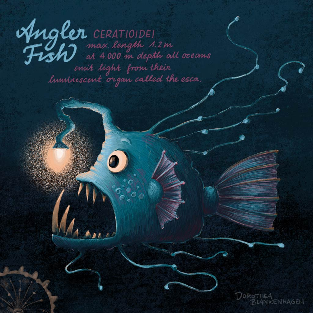 Angler fish/Anglerfisch
