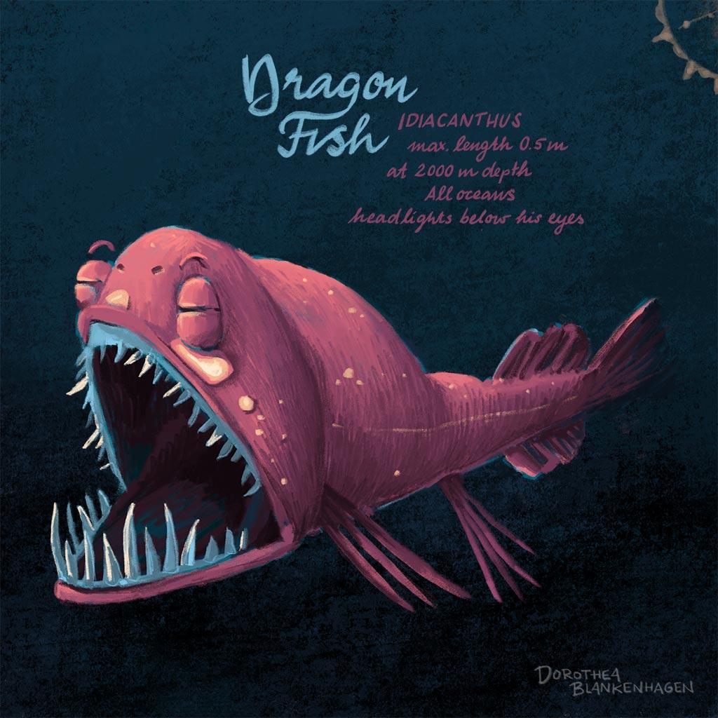 Dragon fish/Drachenfisch